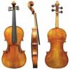 viola Maestro 20 Gewa – različni modeli
