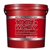 SCITEC NUTRITION proteini 100% Whey Protein Professional, 5kg