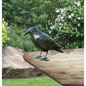 Strašilo za vrane in ostale ptice